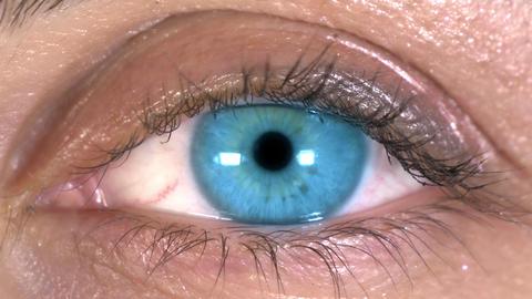Close-up Of Beautiful Blue Eye Footage