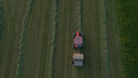 Aerial - Silage harvester cutting the corn Footage