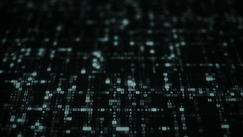 Hexadecimal digital code symbols seamless loop animation Animation