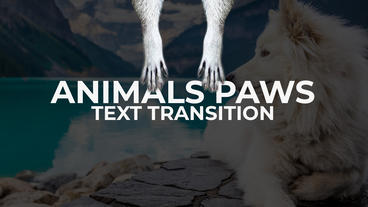 Animals Paws - Text Transitions Premiere Pro Template