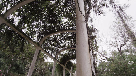 Slow right pan of garden arches in Jardim Botanico Footage