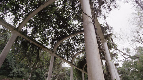 Panning shot of aged pillars in Jardim Botânico in the middle of Rio Footage