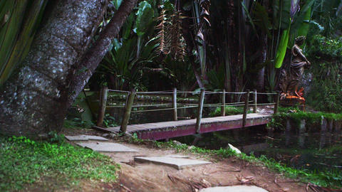 Panning shot of trail and wooden bridge in Rio Footage
