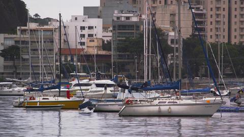 Marina in the heart of Rio de Janeiro, Brazil Live Action