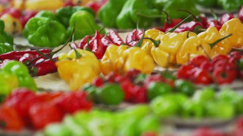 Close-up rack shot of pepper varieties in a market in Rio de Janeiro, Brazil Footage
