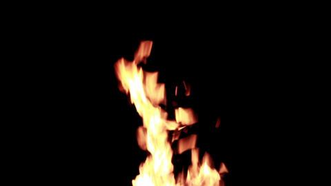 Flames of bonfire burning at night HD 1920 Live Action