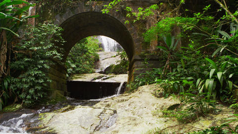 Tracking shot of a scenic jungle stream flowing underneath an arched bridge Footage