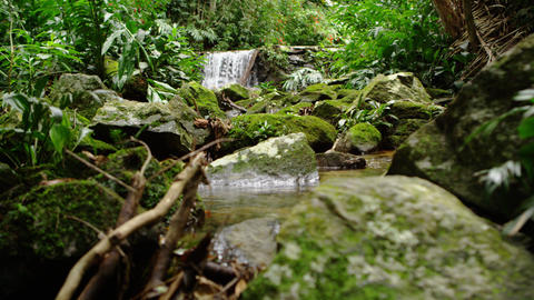 Tracking shot of a waterfall in the jungle Footage