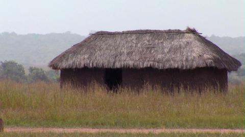 Grass hut in a field in Africa Footage