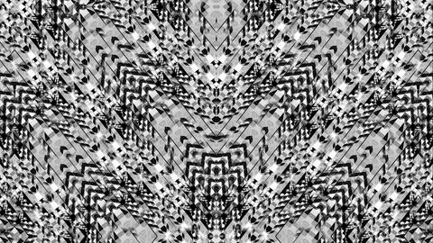 Strobing Mask Black white pattern motion background Vj Loop Footage