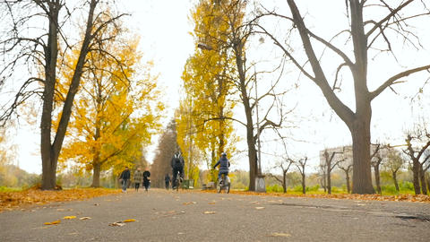 Ukraine, Kiev. Park VDNH 10.27.18 Two cyclists ride through the autumn park Live Action