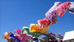 13 狩野川アニメ鯉のぼり38秒フィクス横位置音なし ライブ動画