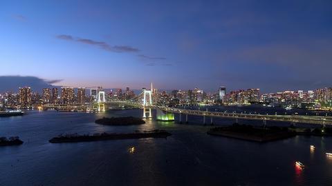 TimeLapse - Urban landscape in the evening of Tokyo Tilt up Footage