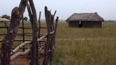 A grassy hut and fence in Africa Footage