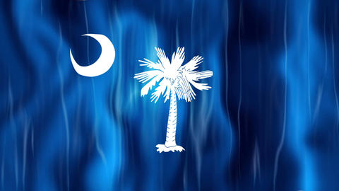 South Carolina State Flag Animation Animation