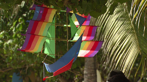 Colorful ship kite hanging from a tree in Bali Live Action