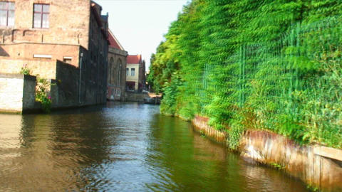 From a canal in Brugge, Belgium Live Action