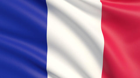 The flag of France. Waved highly detailed fabric texture Live Action