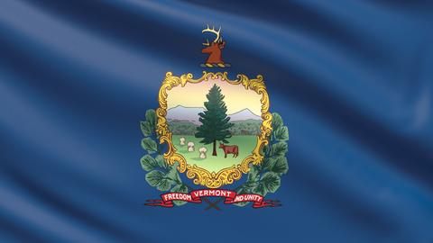 State of Vermont flag. Flags of the states of USA Photo