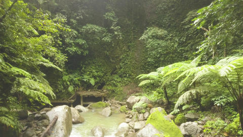Green tropical forest and rocky river flowing on rocks drone view. River stream Footage