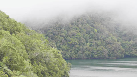 Morning fog over tropical lake and green highlands covered rainforest. Tropical Live Action