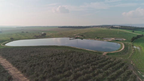 Aerial footage over an Olive plantation in Israel Footage