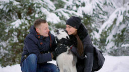 Family portrait of cute happy couple hugging with their alaskan malamute dog ビデオ