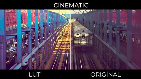 Cinematic LUTs Presets v.2 Premiere Pro Template