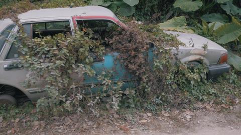 Apocalyptic Abandoned Car 04 Footage