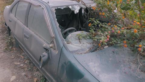 Apocalyptic Abandoned Car 09 Footage