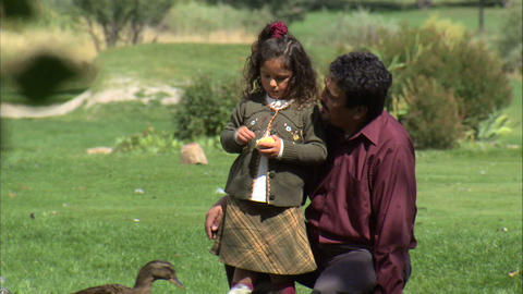 Father and daughter feeding bread to ducks at a park Footage
