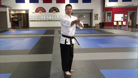 Martial artist using a bo staff Footage