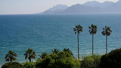 View of the city of Cannes, palm trees, yachts and azure sky ビデオ