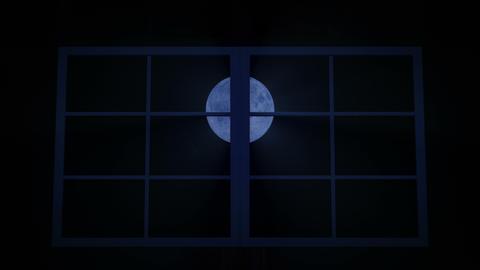 [alt video] Flocks of night owls flying towards full Moon