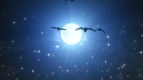 Flocks of night owls flying towards full Moon Animation