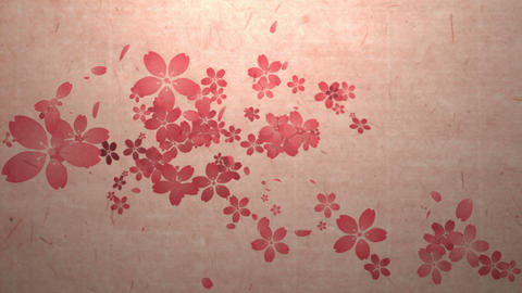 Cherry blossoms are blooming along the trajectory ,in paper texture background 3 애니메이션