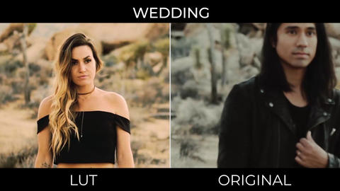 Wedding LUTs Presets Premiere Pro Template