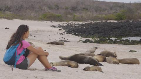 Ecotourism Galapagos tourist looking at Galapagos Sea Lions Footage