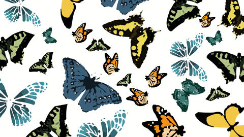 Butterflies Animation