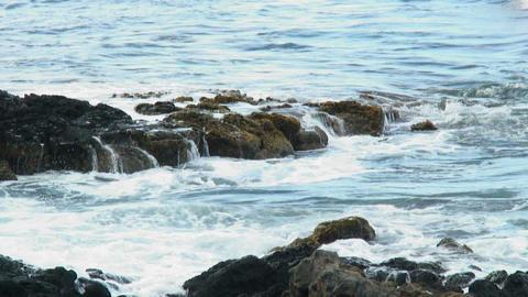 Waves breaking over volcanic rocks on a Hawaiian island Footage