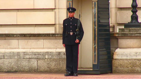 Sentry marching in front of Buckingham Palace Footage