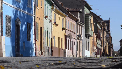 Pigeon walking on a street with many old houses painted in bright colors 01 Footage