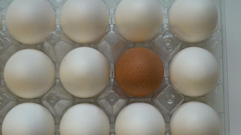 One brown egg among white ones in box. Individuality…, Live Action