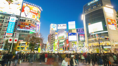 Traveller are walking in Shibuya Crossing the famous place in Tokyo, Japan Live Action