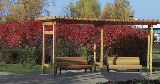Wooden benches and designs in the park Footage