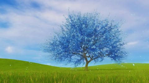 Surreal blue sakura cherry tree in blossom 3D animation 애니메이션