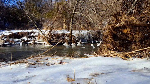 Snowy Bank River in Winter. Cold Water Flowing With Riverside Snow Surrounded By Live Action