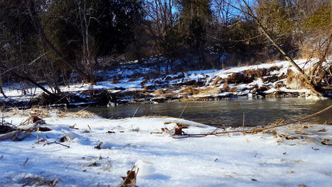 Snowy Bank River in Winter. Cold Water Flowing With Riverside Snow Surrounded By Footage