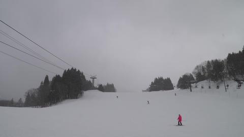 スキー場でスキースノーボードを楽しむ人々 ライブ動画