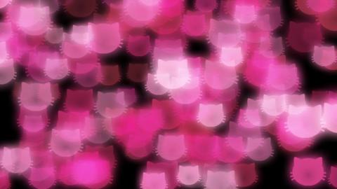 Cat-illuminations-pink Animation
